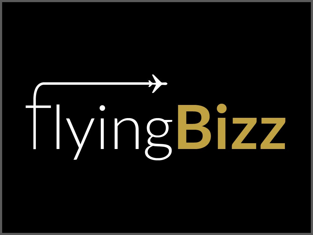 Logo de Flying Bizz