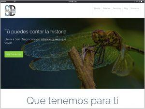 SD Estampa 1657 Website