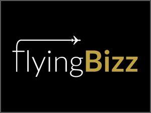 Flying Bizz Branding