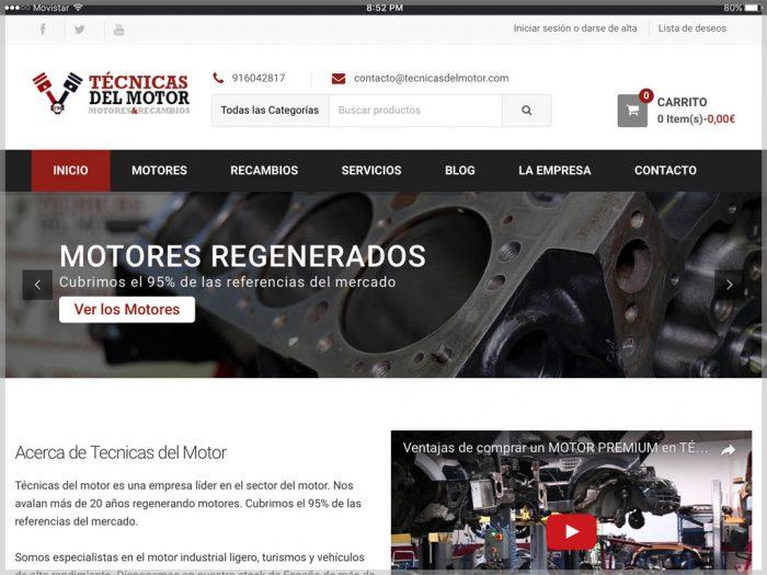 Tecnicas del Motor Website